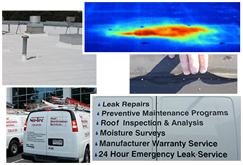 Work Vans With a Thermal Image and Roofs